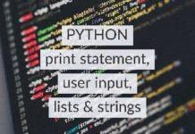 Python print, user input, lists and strings