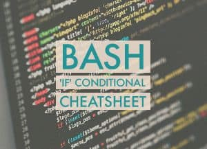 BASH If conditional